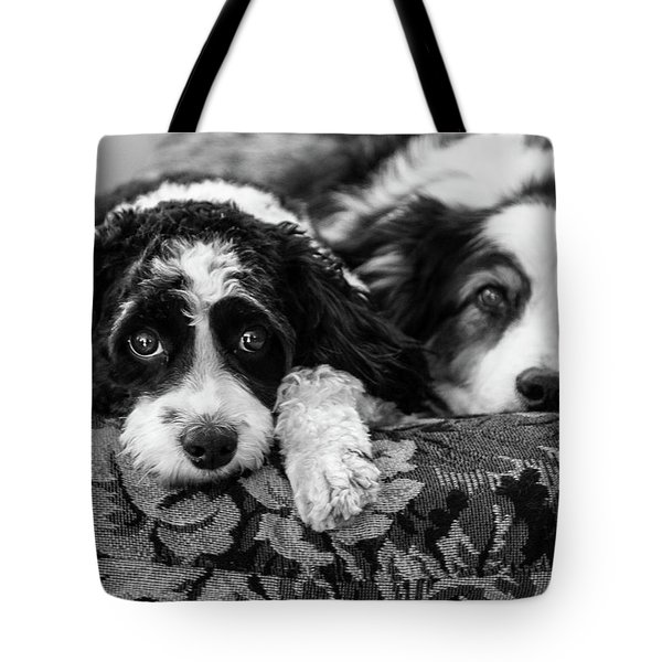 Couch Potatoes Tote Bag