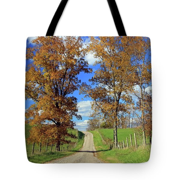 Tote Bag featuring the photograph Country Road Through Fall Trees by Angela Murdock