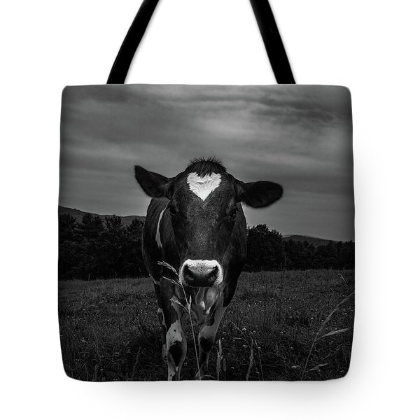 Tote Bag featuring the photograph Cow by Bob Orsillo