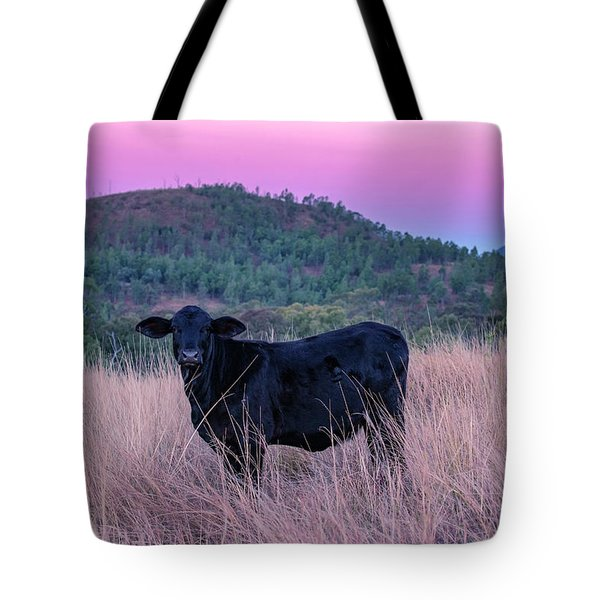 Cow Outside In The Paddock Tote Bag