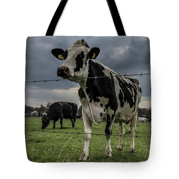 Tote Bag featuring the photograph Cows Landscape. by Anjo Ten Kate