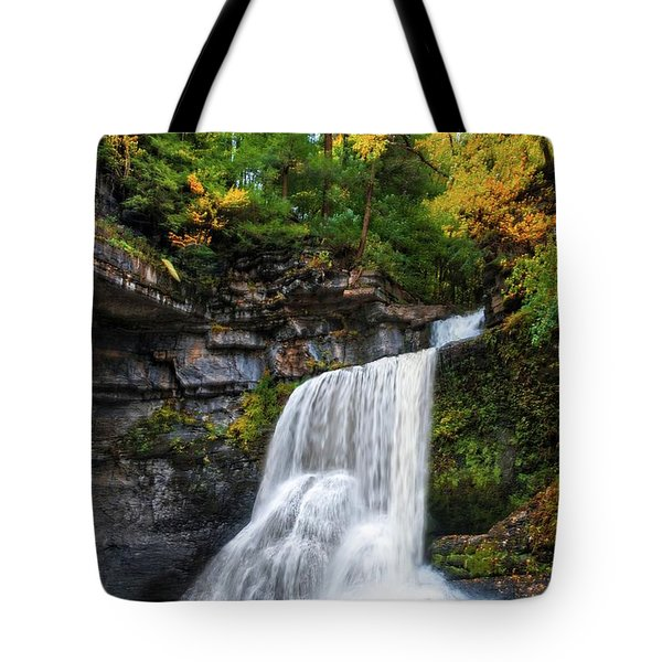 Tote Bag featuring the photograph Cowshed Falls At Watkins Glen State Park - Finger Lakes, New York by Lynn Bauer