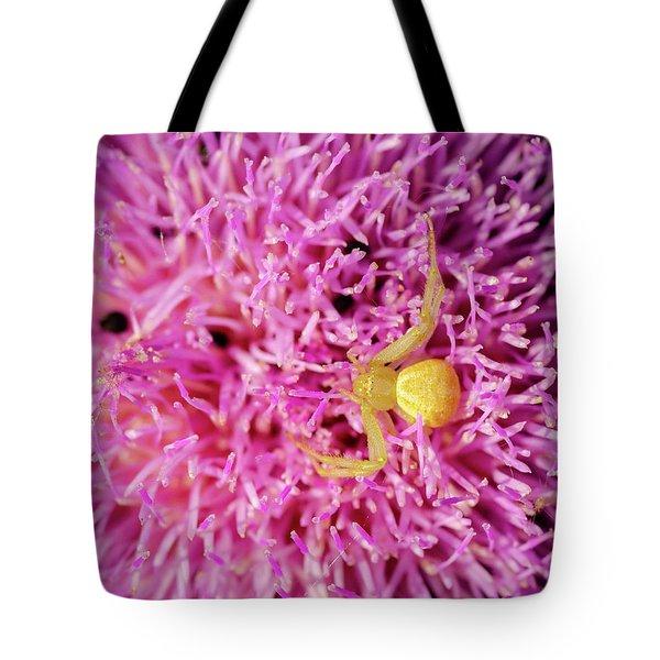 Crab Spider Tote Bag