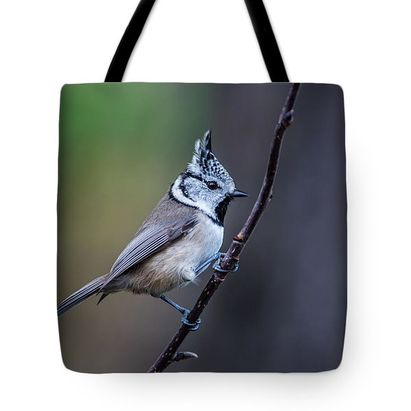 Crested Tit On A Twig Tote Bag