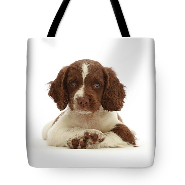 Cross Paws Tote Bag