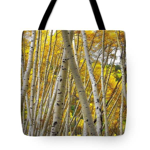 Crossed Aspens Tote Bag