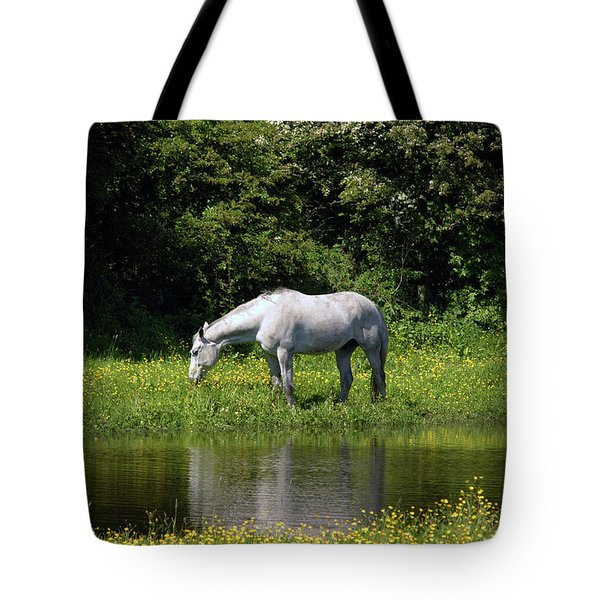Cumbria. Ulverston. Horse By The Canal Tote Bag