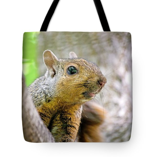 Cute Funny Head Squirrel Tote Bag