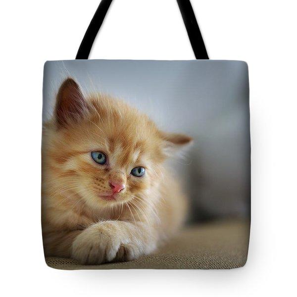 Cute Orange Kitty Tote Bag