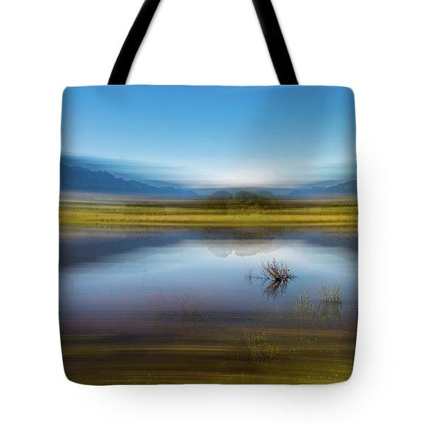 D2056p Tote Bag