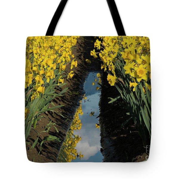 Daffodil Reflections Tote Bag