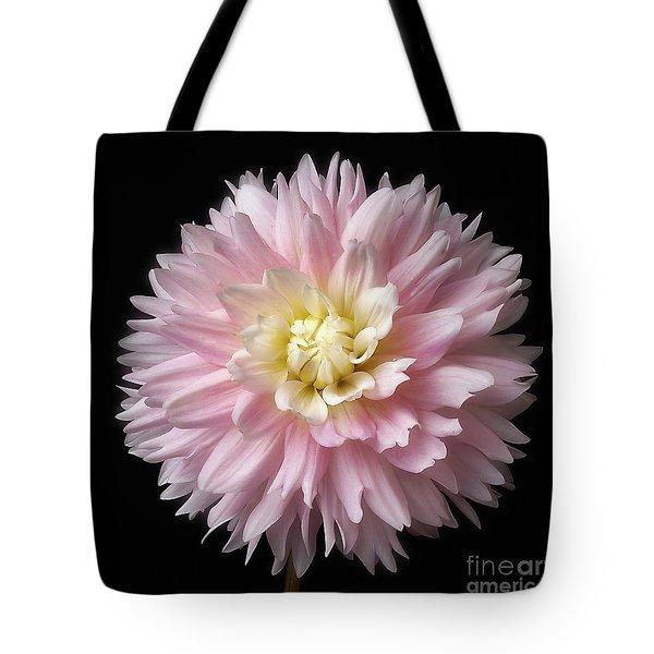 Dahlia 'chilson's Pride' Tote Bag