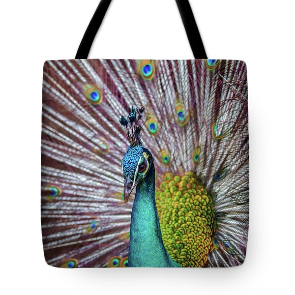 Dancing Indian Peacock  Tote Bag
