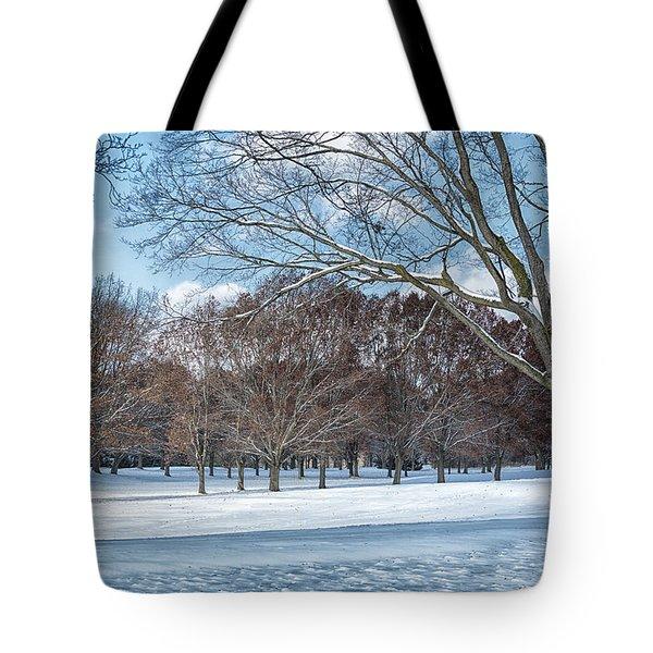 Tote Bag featuring the photograph Dashing Through The Snow by Kim Hojnacki