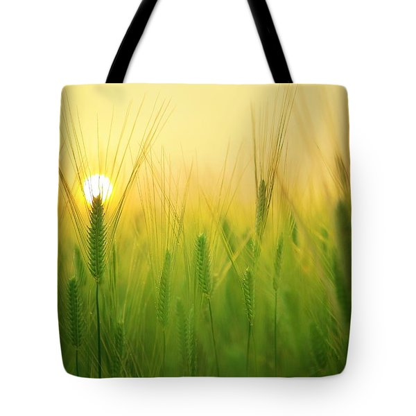 Dawn At The Wheat Field Tote Bag