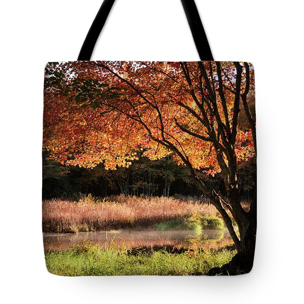 Tote Bag featuring the photograph Dawn Lighting Rhode Island Fall Colors by Jeff Folger