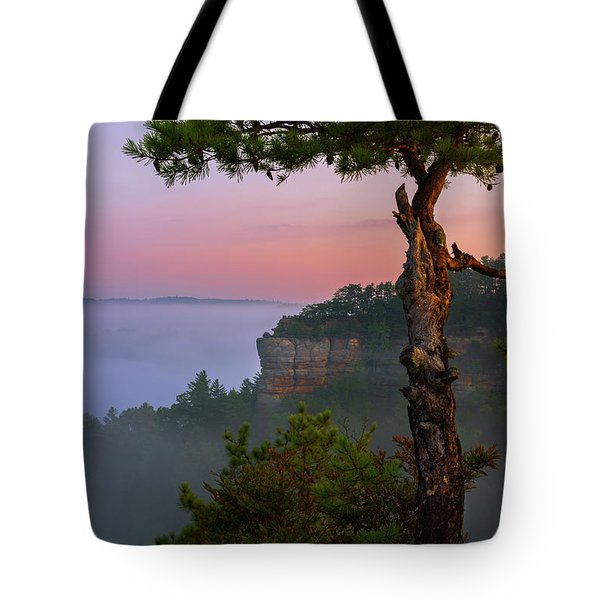Dawn Over The Gorge Tote Bag