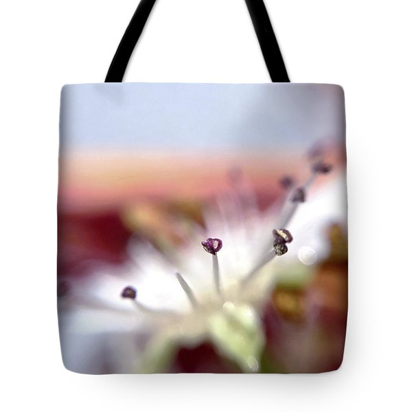 Day 0-1 Sunrise Tote Bag