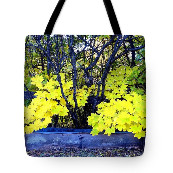 Days Of Autumn 16 Tote Bag