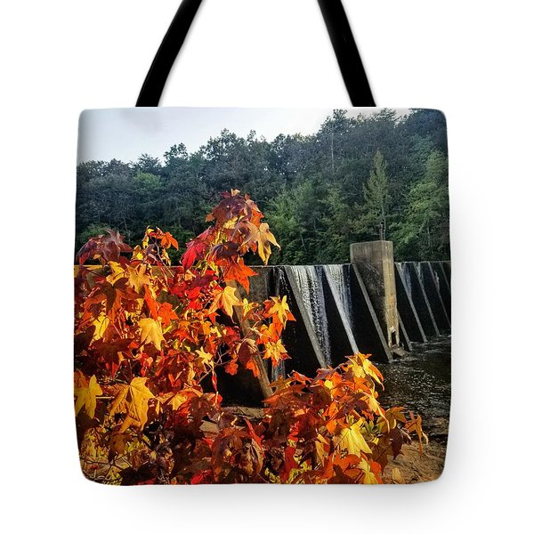 Tote Bag featuring the photograph De Soto Falls In Autumn by Rachel Hannah