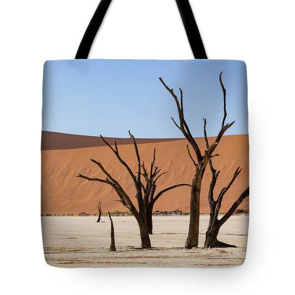 Deadvlei Desert Tote Bag