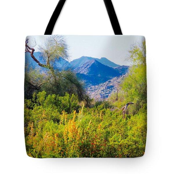 Deep Desert Valley In A Sonoran Desert Spring Tote Bag