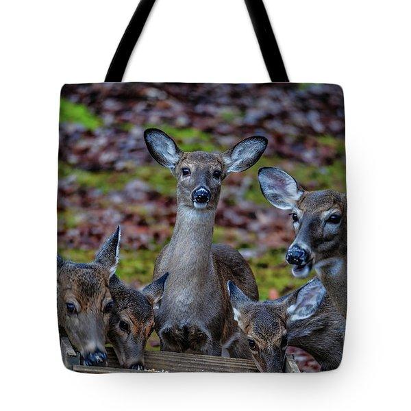 Deer Gathering Tote Bag