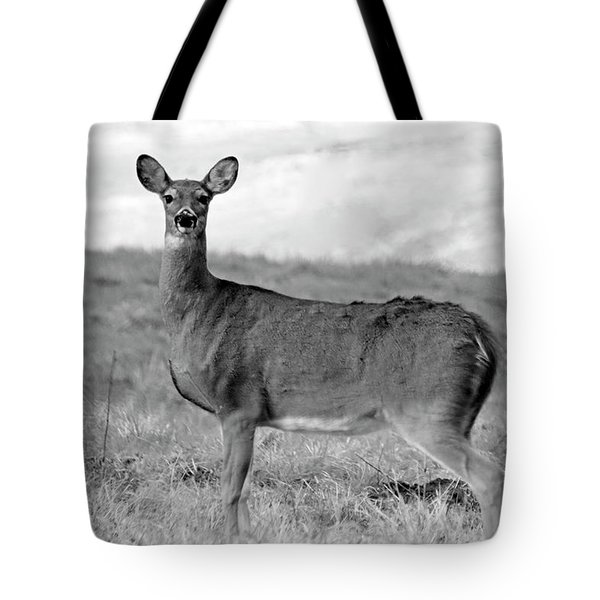 Tote Bag featuring the photograph Deer In Black And White by Angela Murdock