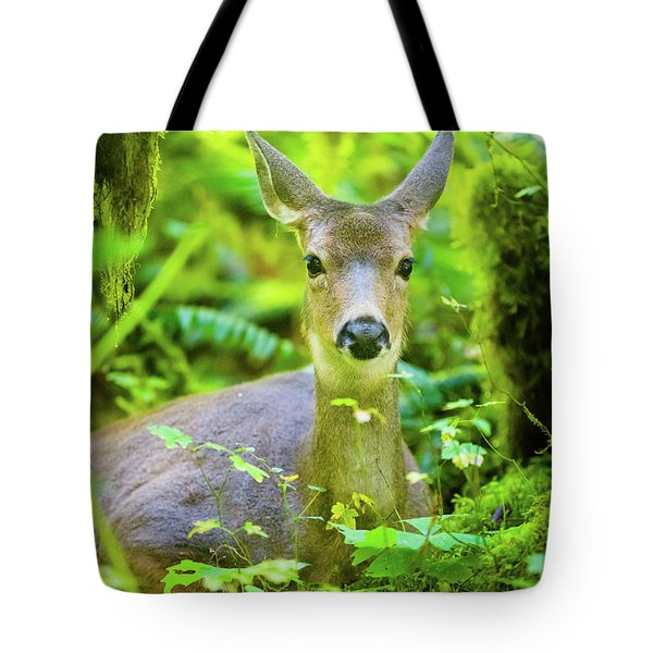 Deer In Rainforest 2 Tote Bag