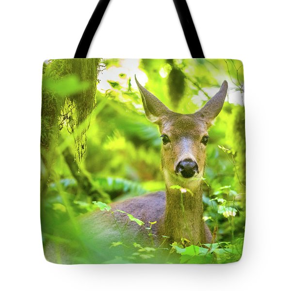 Deer In Rainforest 3 Tote Bag