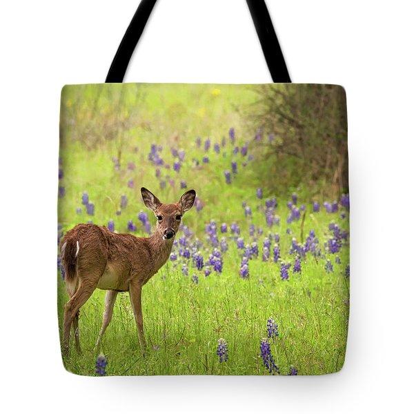 Deer In The Bluebonnets Tote Bag