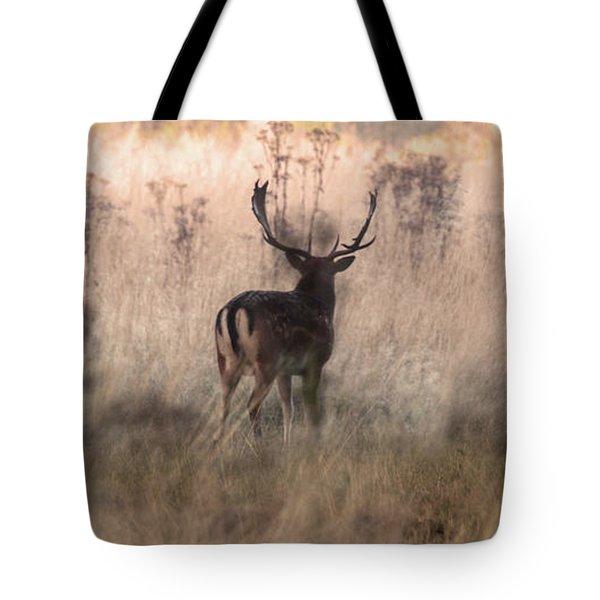 Deer In The Grasses Tote Bag