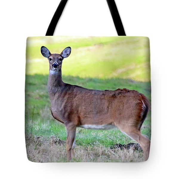 Tote Bag featuring the photograph Deer Standing In A Field by Angela Murdock