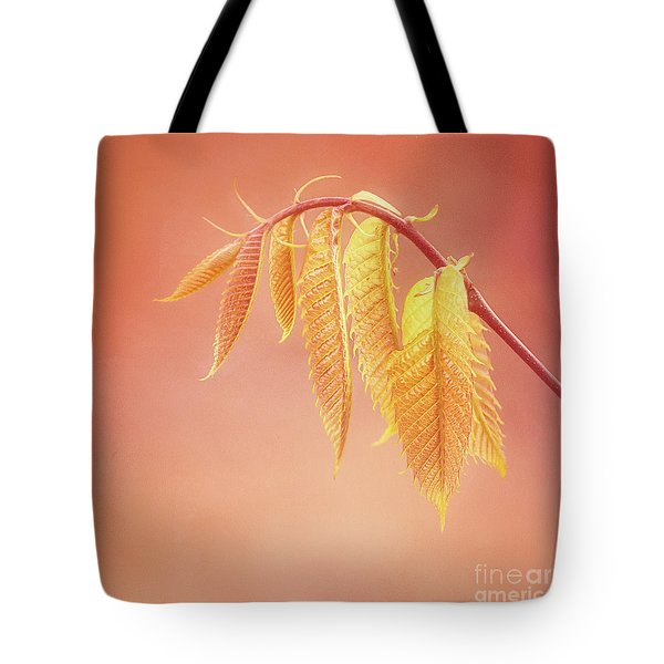 Delightful Baby Chestnut Leaves Tote Bag