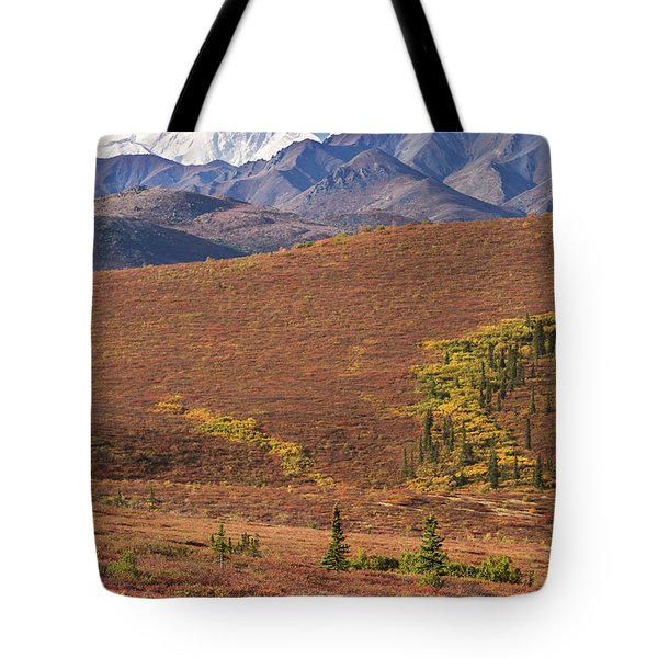 Tote Bag featuring the photograph Denali Grizzly by Tim Newton