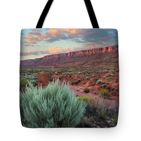 Desert And Cliffs, Vermilion Cliffs Nm Tote Bag