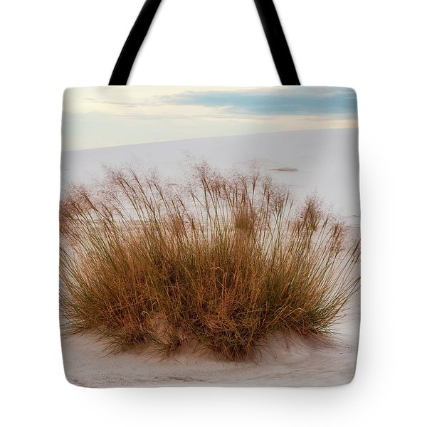 Tote Bag featuring the photograph Desert Dwelling by Rick Furmanek