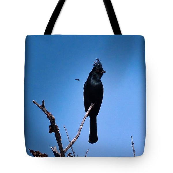 Desert Phainopepla And Dragonfly Tote Bag