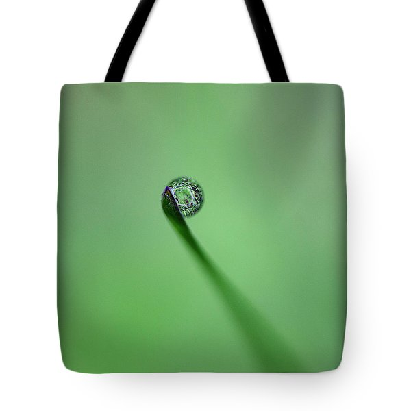 Tote Bag featuring the photograph Dew Drop On Grass by John Rodrigues