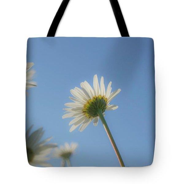 Distracted Daisies Tote Bag