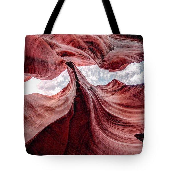 Divided View Tote Bag