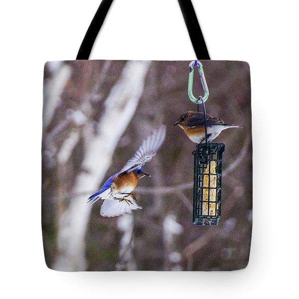 Docking Bluebird Tote Bag