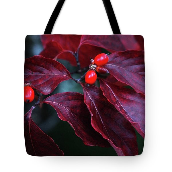 Dogwood Leaves In The Fall Tote Bag