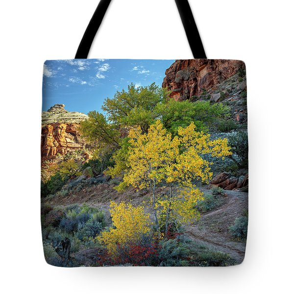 Dominguez Gold Tote Bag