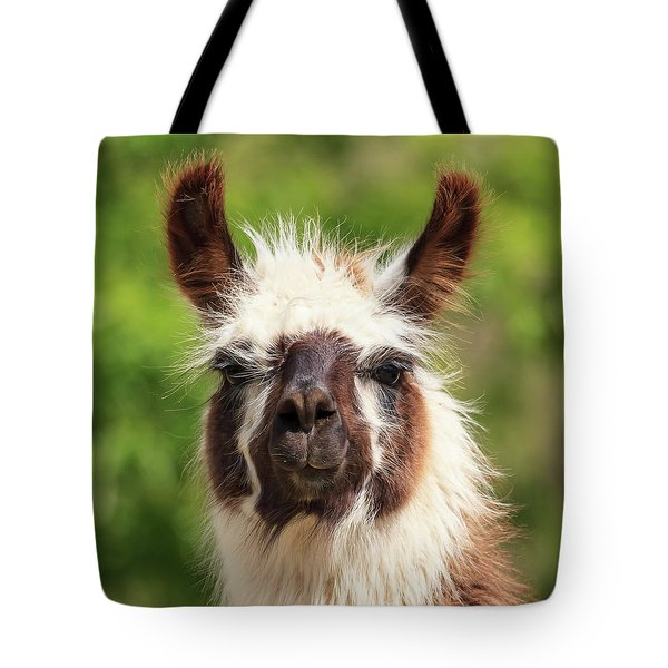Don't Hate Me Because I'm Beautiful Tote Bag