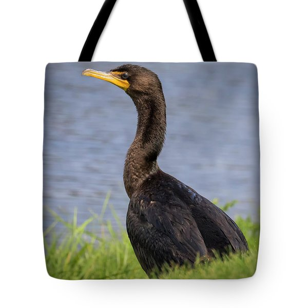 Tote Bag featuring the photograph Double-crested Cormorant by Ricky L Jones