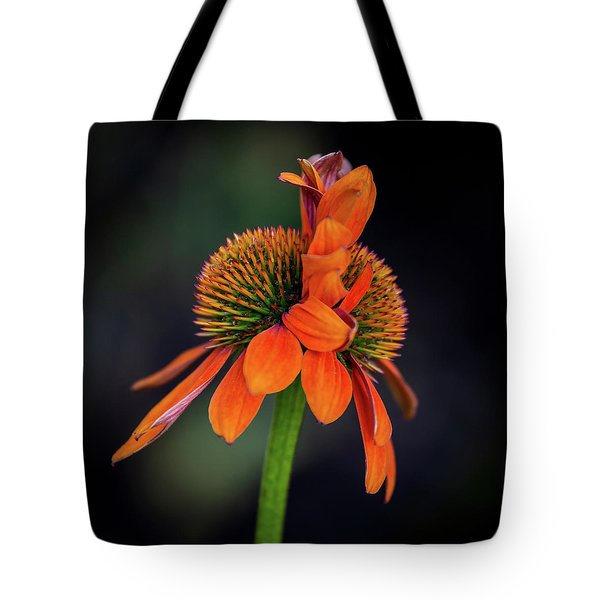 Tote Bag featuring the photograph Double Your Pleasure by Dale Kincaid