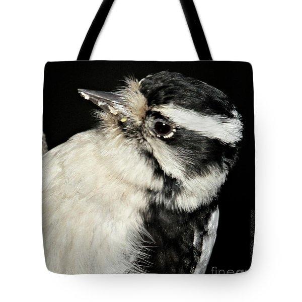Downy Woodpecker Female Tote Bag