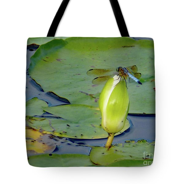 Dragonfly On Liliy Bud Tote Bag