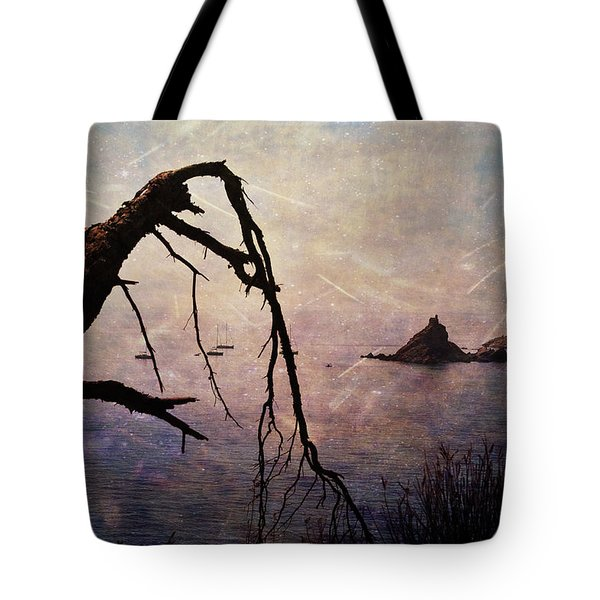 Tote Bag featuring the photograph Drama At Sunset by Randi Grace Nilsberg